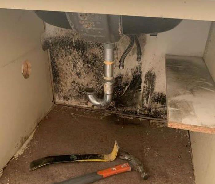 Mould present under bathroom sink