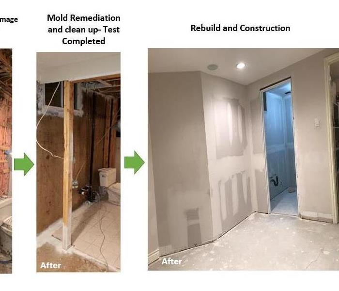 Microbial Growth remediation and rebuild in the basement