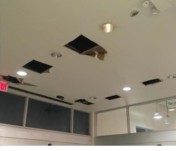 Ceiling cut out in squares