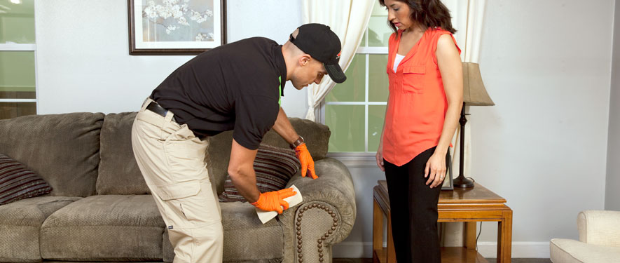 Richmond Hill, ON carpet upholstery cleaning