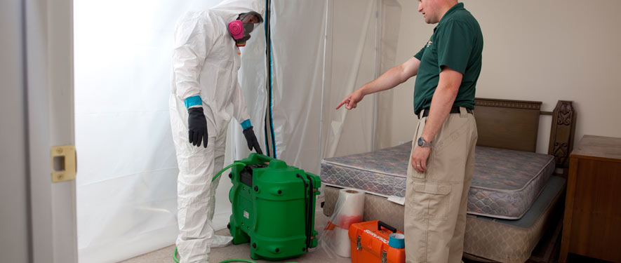 Richmond Hill, ON mold removal process
